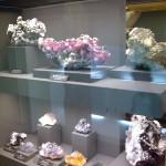 """Die Sammlung """"terra mineralia"""" hat viele Kostbarkeiten zu bieten"""
